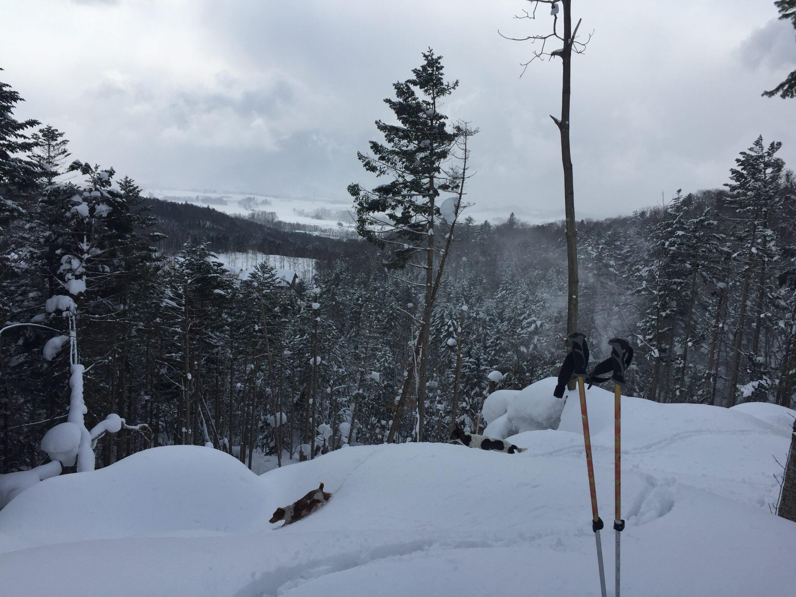 snowhike-teatime-spot