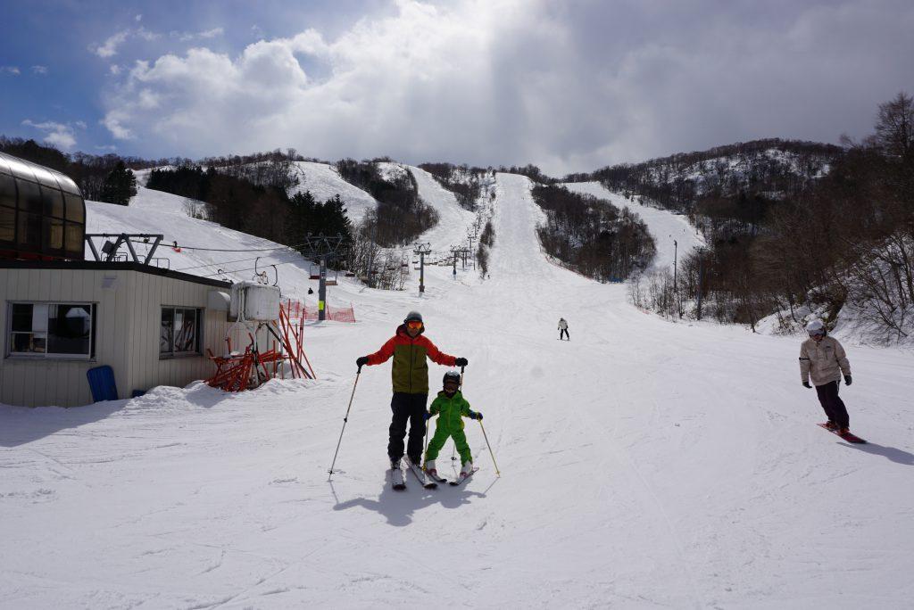 silica-ski